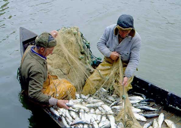 что делать на рыбной ловле