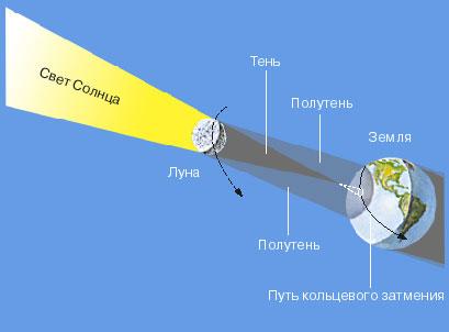 КОЛЬЦЕВОЕ ЗАТМЕНИЕ происходит, когда Луна так далеко от Земли, что ее тень не касается земной поверхности и везде вдоль пути полутени наблюдается частное затмение. В центре полутени Солнце выглядит как тонкое яркое кольцо, блеск которого не позволяет увидеть солнечную корону.