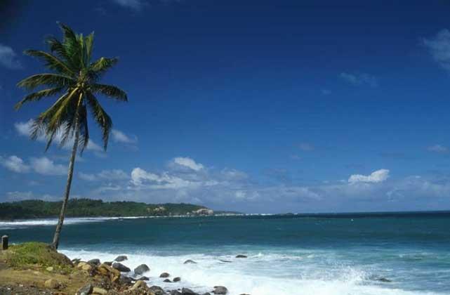 Painet, Inc.     ПОБЕРЕЖЬЕ о.Доминика (архипелаг Малые Антильские острова)