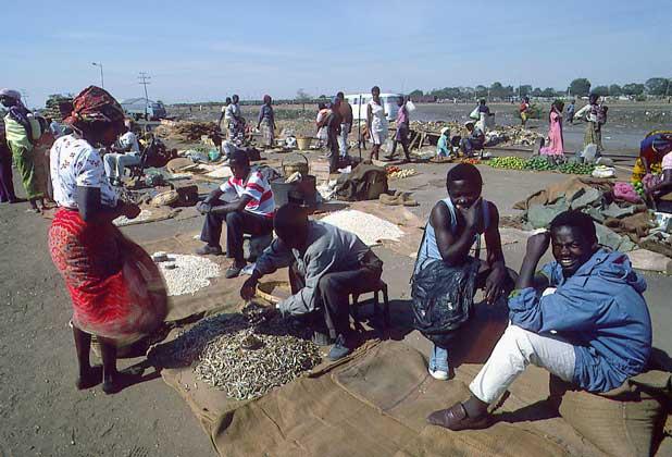 IGDA/S. Vannini     ТИПИЧНЫЙ ГОРОДСКОЙ РЫНОК в Замбии (г.Лусака)