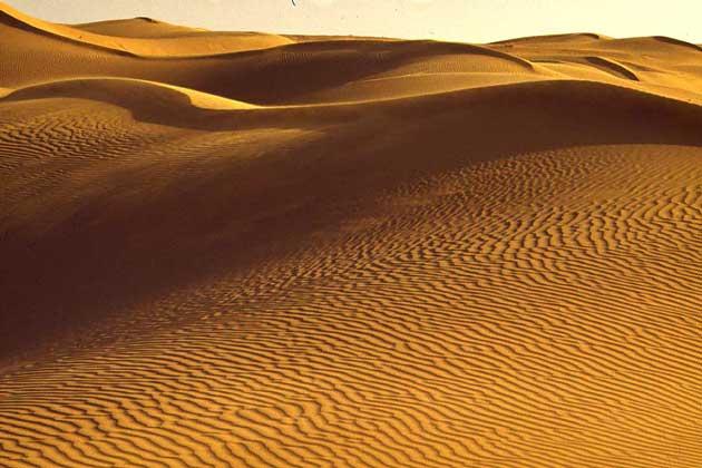 IGDA/Dani-Jeske ПУСТЫНЯ ТАР в пограничных районах Пакистана и Индии протянулась в длину примерно на 800 км и в ширину между рекой Инд с притоком Сатледж и хребтом Аравали примерно на 400 км. В пустыне Тар выпадает от 50 до 130 мм осадков