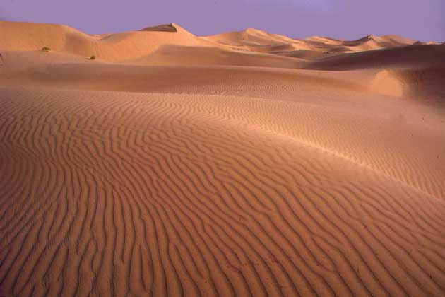 IGDA/C. Sappa ПЕСЧАНЫЕ ДЮНЫ в Сахаре.